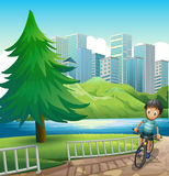 A boy biking across the tall buildings near the river Stock Image