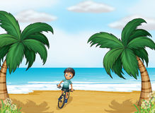 A boy biking at the beach Royalty Free Stock Images