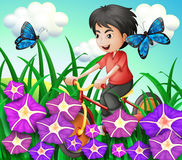 A boy biking in the garden with flowers and butterflies Royalty Free Stock Photos