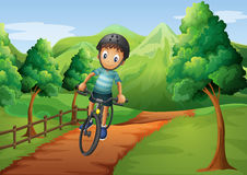 A boy biking going to the farm Royalty Free Stock Photography