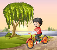 A boy biking Stock Image