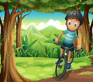 A boy biking in the middle of the forest Royalty Free Stock Images