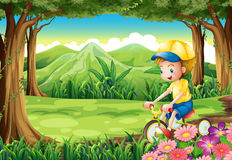 A boy biking in the middle of the forest Stock Photography