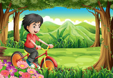 A boy biking at the woods. Illustration of a boy biking at the woods stock illustration
