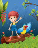 A boy with a bird at the forest Royalty Free Stock Images