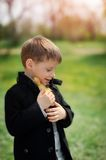 Boy and birds Royalty Free Stock Images
