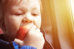 Boy bites red apple with appetite. Royalty Free Stock Images
