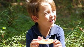 A boy bites a slice of pizza while sitting on a picnic. stock video