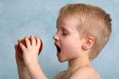 Boy Biting an Apple - Anticipation Royalty Free Stock Image