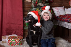 A boy with a black dog in Christmas hats Royalty Free Stock Images