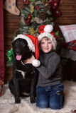 A boy with a black dog in Christmas hats Stock Photos