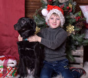 A boy with a black dog in Christmas hats Royalty Free Stock Photo