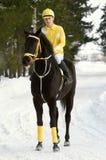 Boy on the black horse stock image