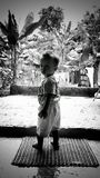 Boy. Black and white boy in nature tree Stock Images