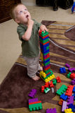 Boy with blocks Stock Photo