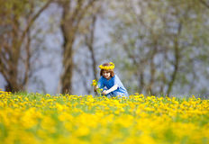 Boy with Blond Hair Picking Dandelions Stock Images