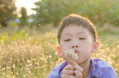 Boy blowing away flower in spring Stock Images