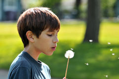 Boy blowing a dandelion. Outdoors royalty free stock photography