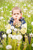 Boy blowing dandelion Stock Photo