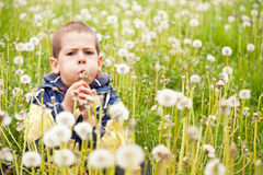Boy blowing dandelion. Preschooler boy blowing dandelion in nature Royalty Free Stock Image