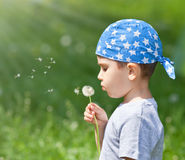 Boy blowing dandelion. Little cute boy blowing dandelion on blurred dandelion field Royalty Free Stock Image