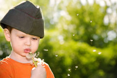 Boy blowing dandelion. Little boy blowing a dandelion in a field Royalty Free Stock Photography