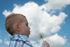 Boy blowing dandelion. Against cloudy sky Royalty Free Stock Image