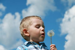 Boy blowing dandelion. Against cloudy sky Royalty Free Stock Images