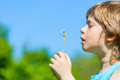 Free Boy Blowing Dandelion Stock Image - 54411801