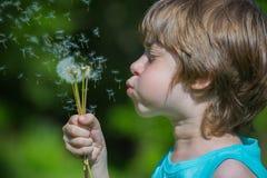 Boy blowing dandelion Stock Photography