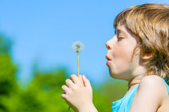 Boy blowing dandelion. Cute Boy blowing dandelion seeds in the park Stock Image