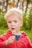 Boy blowing dandelion flower. Green background, closeup Royalty Free Stock Image