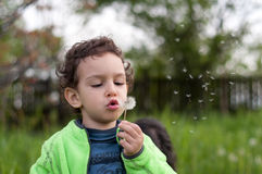 Boy blowing a dandelion flower. Boy holding a dandelion flower in his hand and blowing it Royalty Free Stock Images