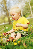 Boy blowing dandelion. Little boy blowing a dandelion. Field of dandelions in a park in summer Royalty Free Stock Photography