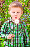 Boy blowing on a dandelion. Portrait of cute boy blowing on a dandelion Stock Images