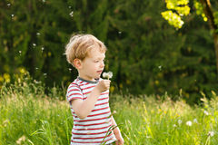Boy blowing dandelion seeds. Little boy blowing dandelion seed for a wish on a meadow outdoors in summer Stock Photography