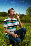 Boy blowing dandelion seeds Stock Image