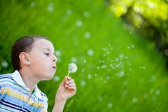 Boy blowing dandelion seeds outdoors in a field. Beautiful boy blowing dandelion seeds outdoors in a green grass field Stock Photography