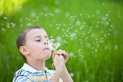 Boy blowing dandelion seeds outdoors in a field. Beautiful boy blowing dandelion seeds outdoors in a green grass field Royalty Free Stock Photography