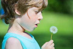 Boy blowing dandelion. In spring Royalty Free Stock Images