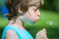 Boy blowing dandelion. At spring Royalty Free Stock Photo