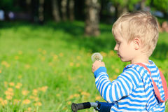 Boy blowing dandelion on summer day. Little boy blowing dandelion on summer day Royalty Free Stock Images