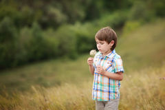 Boy blowing dandelion Royalty Free Stock Photography