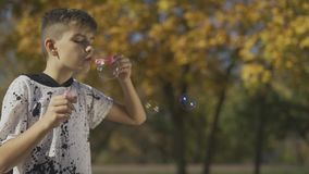 Boy blowing a soap bubble in the park. Hands of child are popping soap bubbles. Slow motion. Boy blowing a soap bubble in the park. Hands of child are popping stock video footage