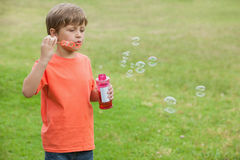 Boy blowing soap bubbles at park Stock Photo