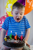Boy blows out the candles. On the birthday cake Royalty Free Stock Photos