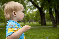 The boy blows soap bubbles. In park Stock Image