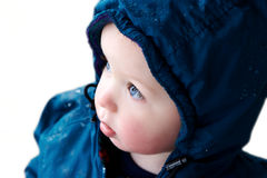Boy in blue coat: isolated. 1.5 year old boy wearing blue coat; isolated background Royalty Free Stock Images