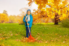 Boy in blue jacket with rake cleaning grass Stock Image