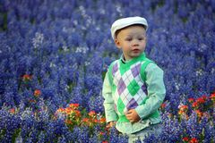 Boy in Bluebonnets Royalty Free Stock Photography